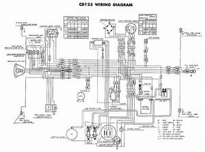 Honda Ps 125 Wiring Diagram