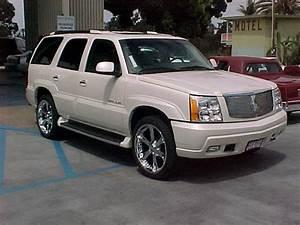 Mcanzio 2002 Cadillac Escalade Specs  Photos  Modification