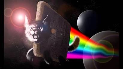 Cat Nyan Dubstep