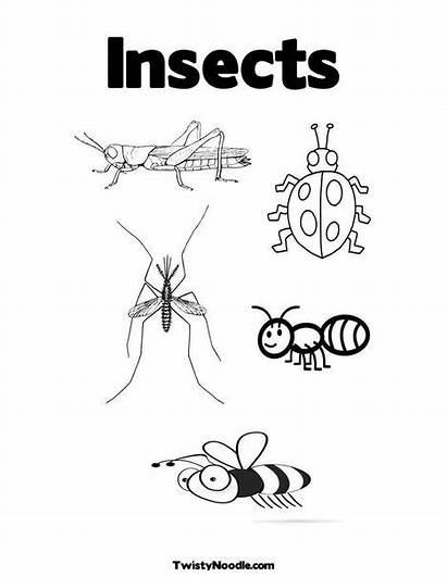 Coloring Printable Insect Pages Insects Colouring Parts