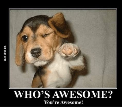 You Re Awesome Meme Who S Awesome You Re Awesome Whos Awesome Meme On Me Me