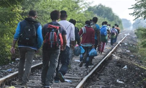 «refugiado» no es lo mismo que «inmigrante» | Fundéu BBVA