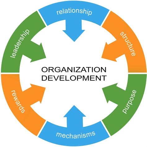 Organizational Development Definition, Uses And Techniques. Temple Graduate Programs Simple Machines Com. Auto Insurance America Pay Online. Moving Company Champaign Regus Office London. Christian Classical Education. Cleveland Cord Blood Center Nfl Week 8 Games. Business Education Online Fixing Leaking Roof. Medical Alert System For Seniors. Classic Cars Insurance Quotes