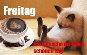 Whatsapp Guten Morgen Bilder Kostenlos : guten morgen freitag ich w nsche dir einen sch nnen tag ~ Frokenaadalensverden.com Haus und Dekorationen