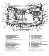 Diagram 1995 Ford Contour Engine Diagram Full Version Hd Quality Engine Diagram Diagrammartav Dammariecyclo Fr
