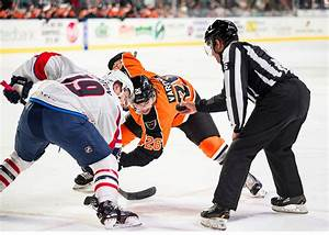 Springfield Thunderbirds move up in standings despite ...