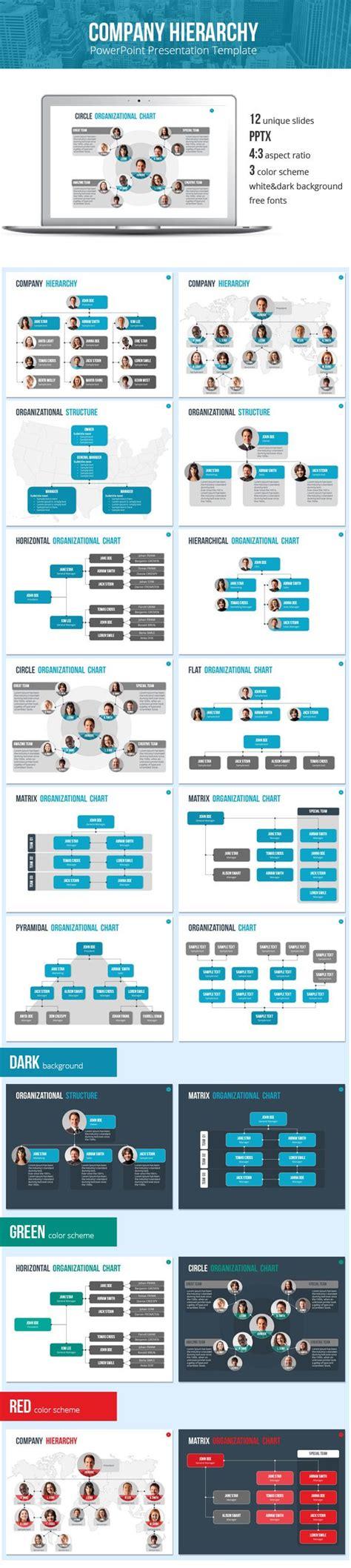 organizational chart  hierarchy template business