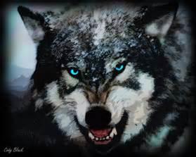 Lone Wolf deviantART