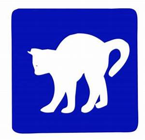 Cat sign Photo | Free Download