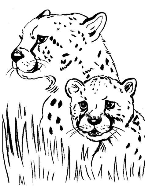Cheetah Kleurplaat by Cheetah Coloring Pages To Print Paterns