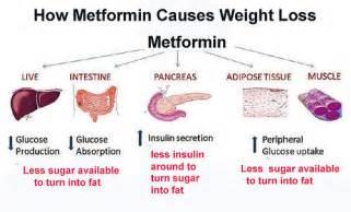 Weight Loss On Metformin