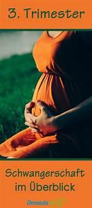 Schwangerschaft 3 Trimester : 47 besten schwangerschaftswochen ssw bilder auf pinterest schwangerschaftswochen babys und ssw ~ Frokenaadalensverden.com Haus und Dekorationen