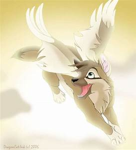 Angel Wolf - Teddybear64 Fan Art (17405090) - Fanpop