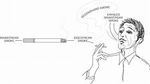 1 Mainstream smoke is inhaled by the smoker during puffing, and to a... - Download Scientific ...  Environmental Tobacco Smoke Secondhand Smoke