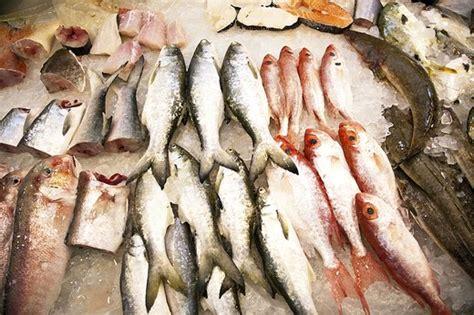 types  fish  avoid eating livestrongcom