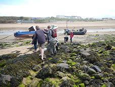 Beach Ecology Geology Bude Cornwall