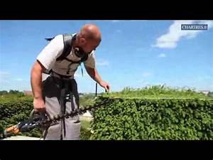 Comment Tailler Les Orchidées Pour Qu Elles Refleurissent : chronique jardinage bien tailler votre haie youtube ~ Melissatoandfro.com Idées de Décoration
