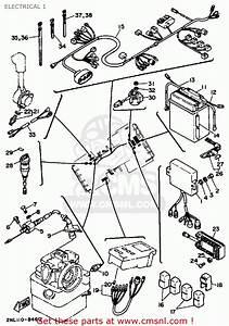 Fleetwood Terra Wiring Diagram