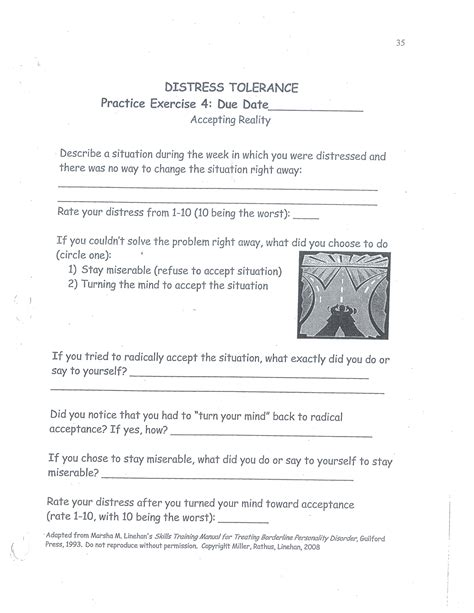 dbt distress tolerance accepting reality homework