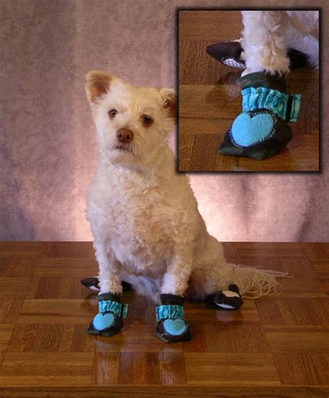 shoes for dogs on hardwood floors best dog booties for hardwood floors carpet review
