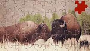 Mein Garten Spiele Kostenlos : puzzle online spielen mit dem kostenlosen puzzle book bei spiele t ~ Frokenaadalensverden.com Haus und Dekorationen