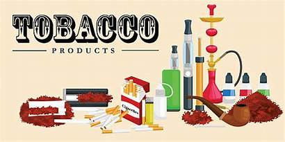 Tobacco Cigarettes Vector Nicotine Smoking Clipart Chewing