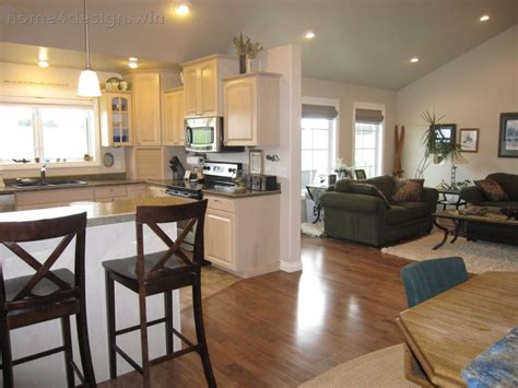 In One Ideas For Kitchen And Living Room In One Open Paint