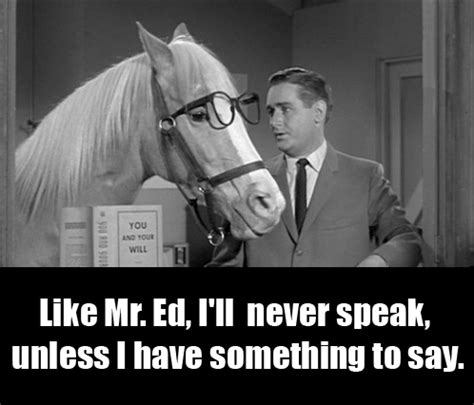 Mr Ed Meme - mr ed and the burden of being seen as a spokesman huffpost