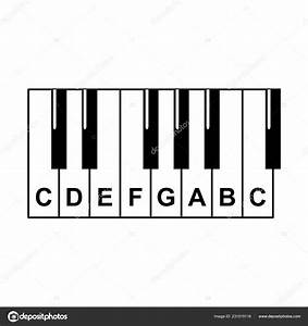Piano Chords Piano Key Notes Chart White Background Vector