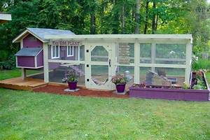 Backyard Chickens: How to Design Your Chicken Run Home