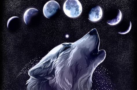 A collection of the top 34 galaxy wolf wallpapers and backgrounds available for download for free. Galaxy Wolf Wallpapers - Top Free Galaxy Wolf Backgrounds - WallpaperAccess