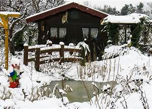 Gartenarbeit Im August : gartenarbeit im januar gartentipps f r den winter ~ Lizthompson.info Haus und Dekorationen