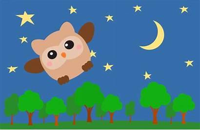 Sky Night Clipart Owl Starry Animated Tree