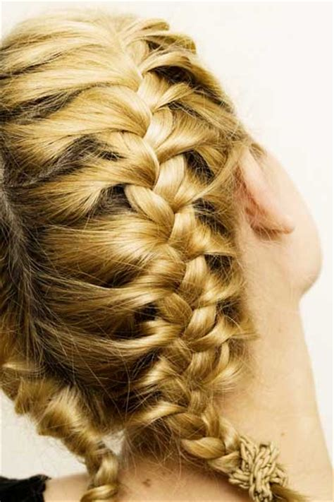 Double Braids Hair Colors Ideas