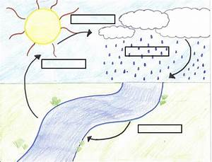 345 Best Images About Water Cycle  U2665 Projects  U0026 Ideas For