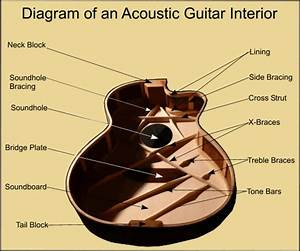Inside Acoustic Guitar Diagram       Bracing