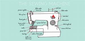 Science Of Sewing  U2013 Anatomy Of A Sewing Machine