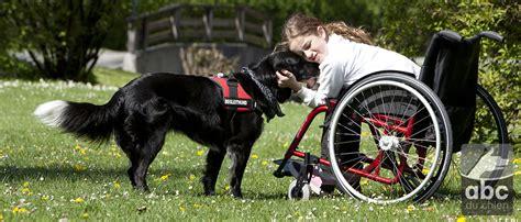 cours adapt 233 s pour personne handicap 233 e abc du chien