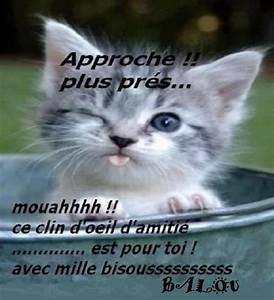 Bonjour La Haut : bonjour bichette photos humour ~ Medecine-chirurgie-esthetiques.com Avis de Voitures
