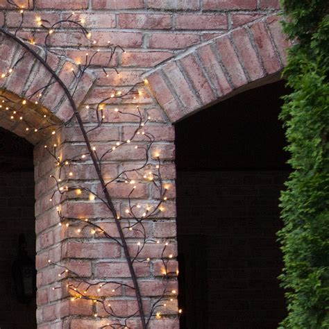 brown climbing vine lighted branches  warm white led