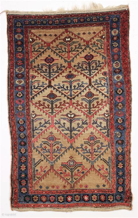 Antique Nw Persian Or Kurdish Camel Ground Rug