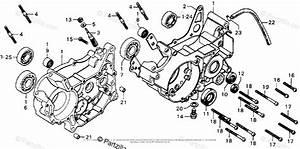 Wire Diagram Honda Mt125