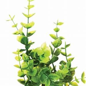 Plante Grasse Artificielle : plante en pot plante grasse 9cm ~ Teatrodelosmanantiales.com Idées de Décoration
