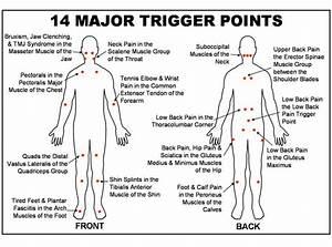 11 Best Trigger Points Massage Images On Pinterest