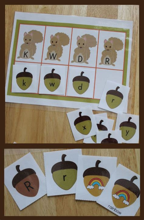 squirrel and acorn letter and beginning sound sort for pre 632 | 680957923b7b344844b6017030f76465