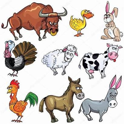 Animals Cartoon Farm Animais Desenho Animali Fazenda