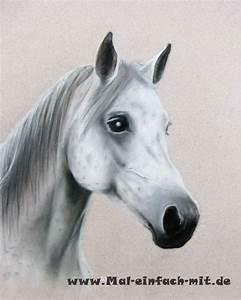 Zeichnen Lernen Mit Bleistift : pferde zeichnen pferdeportr t mal einfach mit ~ Frokenaadalensverden.com Haus und Dekorationen