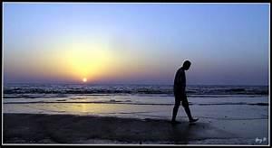 Walking Alone On The Beach - Hot Girls Wallpaper