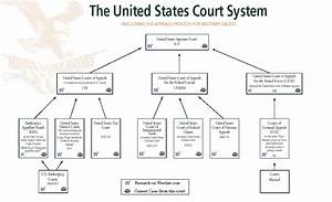 Us Court System Diagram