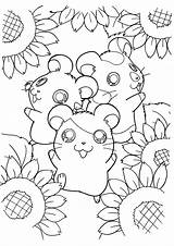 Coloring Hamtaro Pages Hamster Hamsters Tv Sheets Sunflower Series Kawaii Colouring Printable Picgifs Sheet Cartoon Anime Flower Bestcoloringpagesforkids Pet Surrounded sketch template